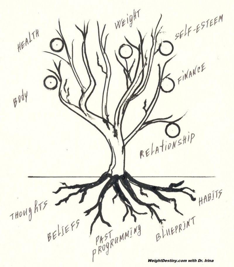 Life-Tree_WeightDestiny-897x1024.jpg