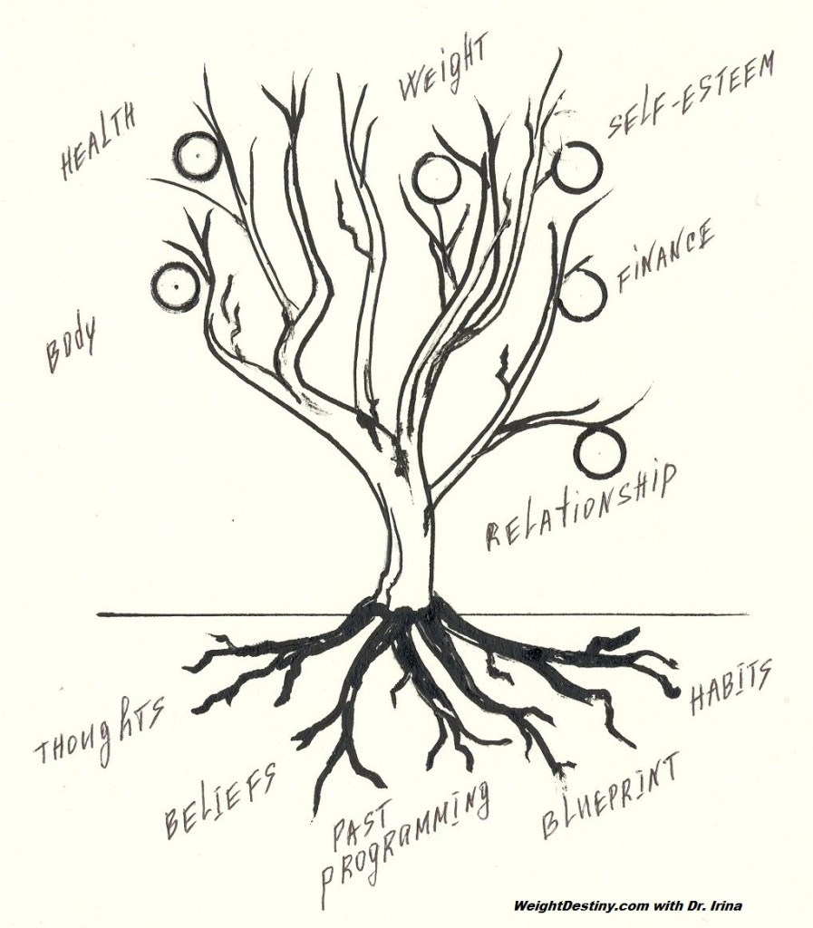 Life Tree. Our Inner = Outer World.