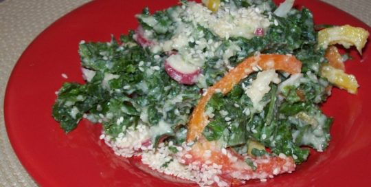 Kale salad_Low GI recipes_healthy appetizers salads
